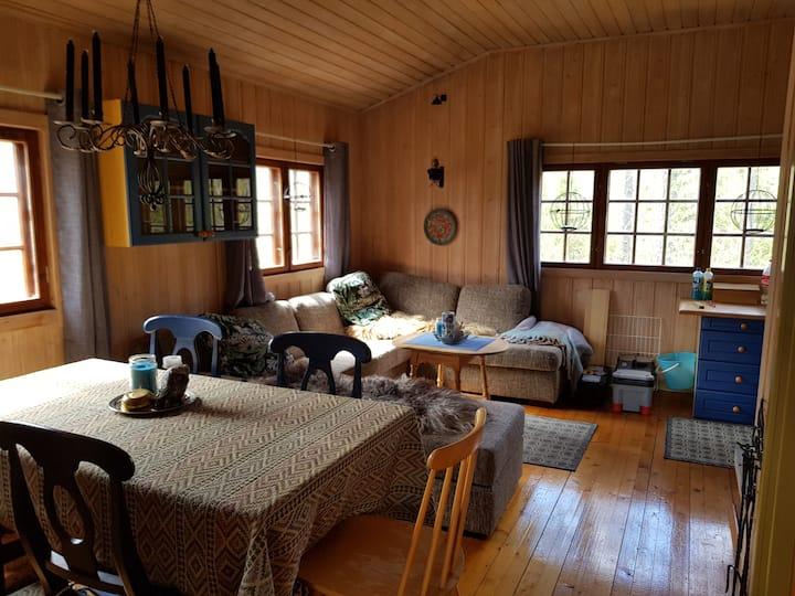 Koselig hytte i vakker natur, jakt/fiskemuligheter