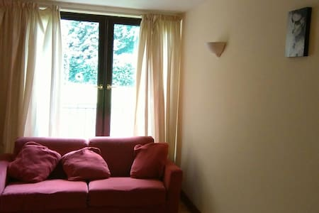 Great apartment/location no Pets - Donnybrook