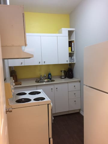 Swanky 2 Bedroom in Heart of Downtown - Hamilton - Apartament