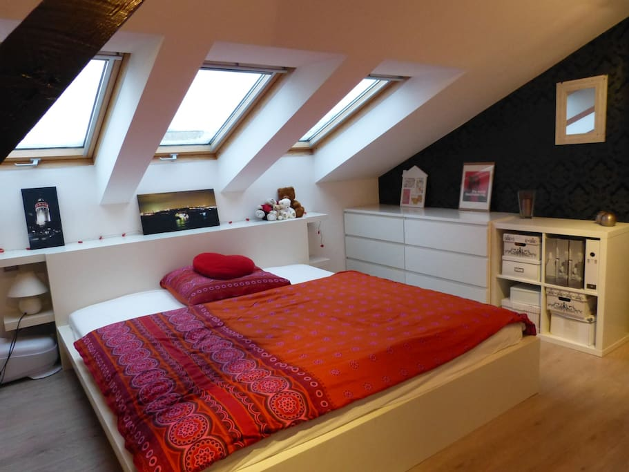 Guest room - your dormitory