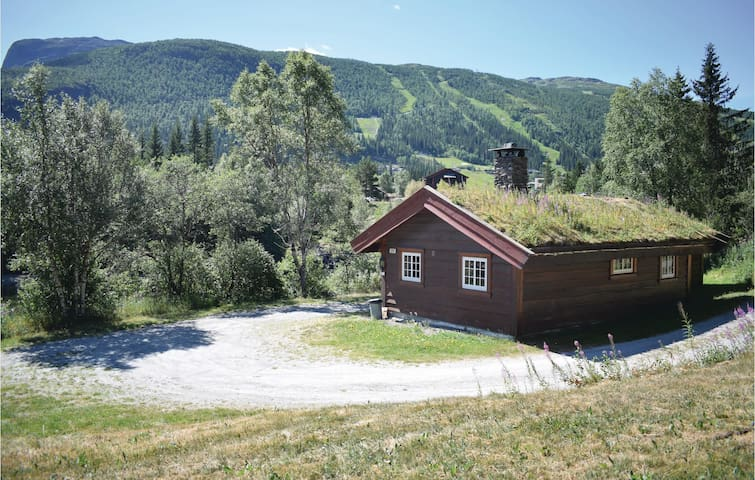 Holiday cottage with 3 bedrooms on 72m² in Hemsedal