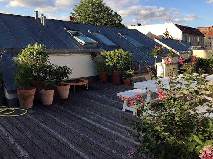 Familienfreundliche 4 Zi. Wohnung mit Dachterrasse
