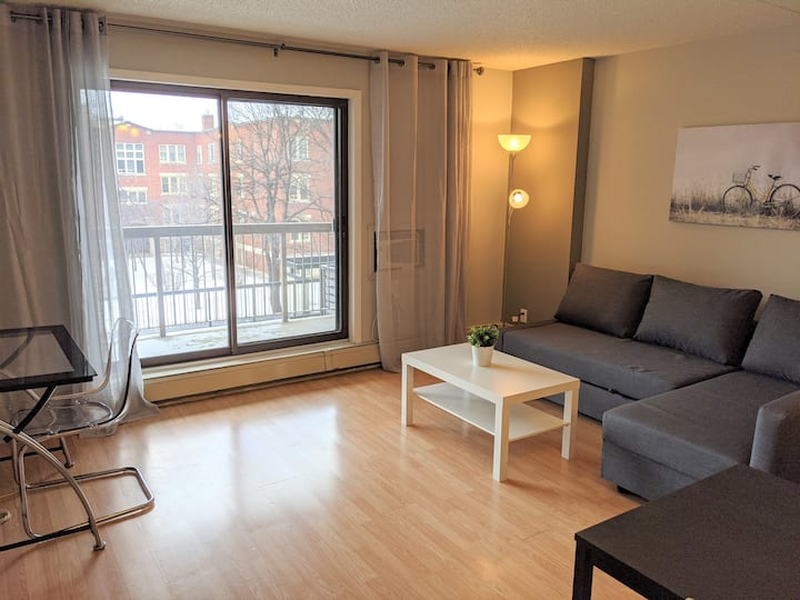 Cozy condo in the heart of downtown Winnipeg