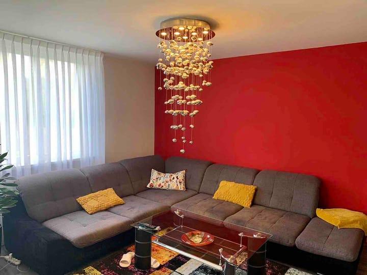 Living in Amsterdam (Private Room - CS area)