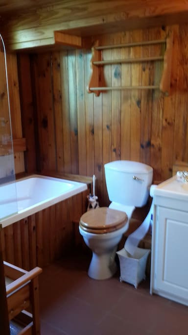 Bath, shower, toilet, basin