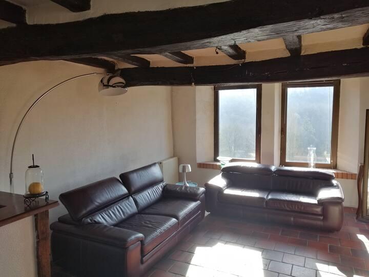 Maison bord de sèvre proche du Puy du Fou