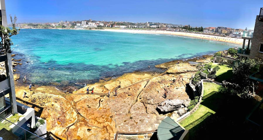 Sun-drenched water-front studio Bondi Beach