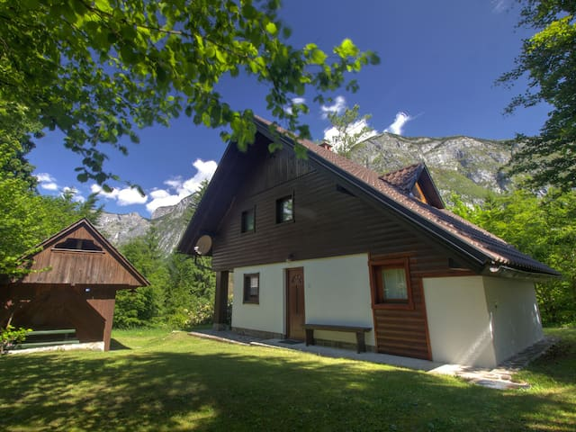 Apartment in forest, 300 m from Lake Bohinj, A4 - Ukanc - Apartamento