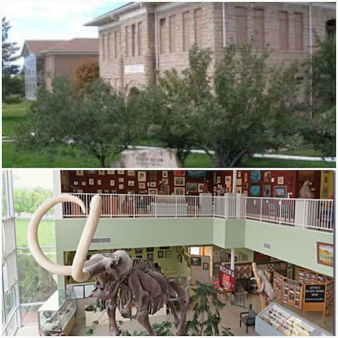 Fairview Museum of History, a former school house is full of pioneer artifacts. Wooly Mammoth at the south building of Fairview Museum. Discovered during construction at Huntington Reservoir.
