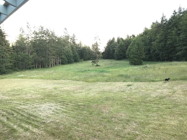 South facing meadow view from deck