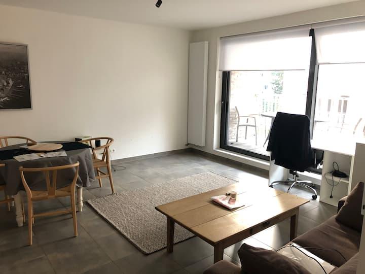 Spacious modern apartment, easy access