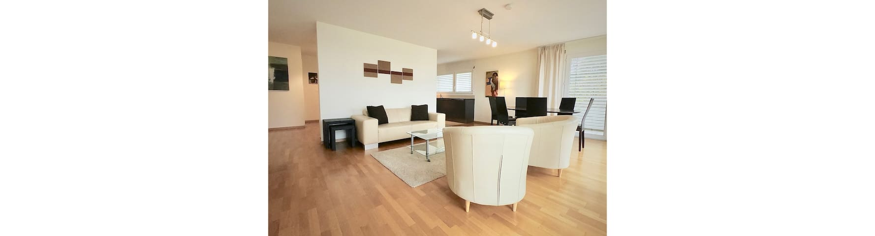 Bright spacious and modern apartment with terrace