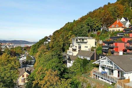 Bergen Skyview Room! - Bergen