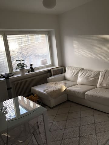 New renovated apartment