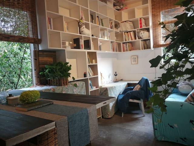 西南大学北区·龙猫主题·一室一厅大书架