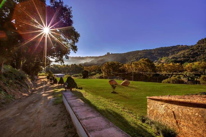 Masia Rural Típica Catalana S.XVI - Arenys de munt - 一軒家