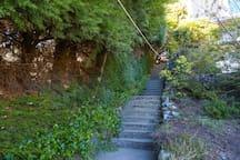 Escalera que baja al lago al costado de nuestra casa