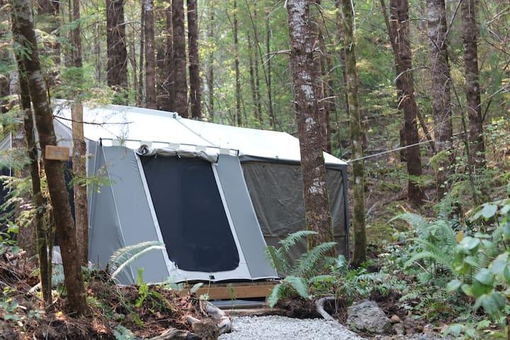 Sol duc rainforest retreat glamping cabin tent 2