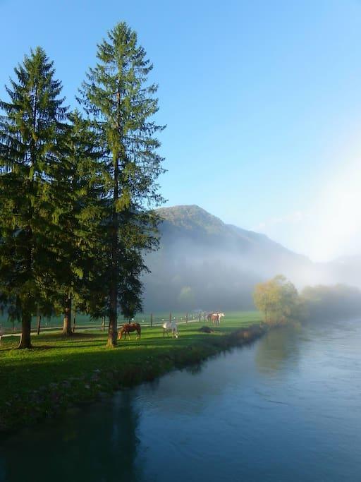 Ribno River