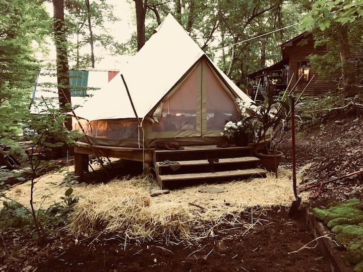 Cosmic Gypsy Tent