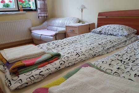 Private room, bathroom, fridge and a big garden - Târgu Mureș - 獨棟
