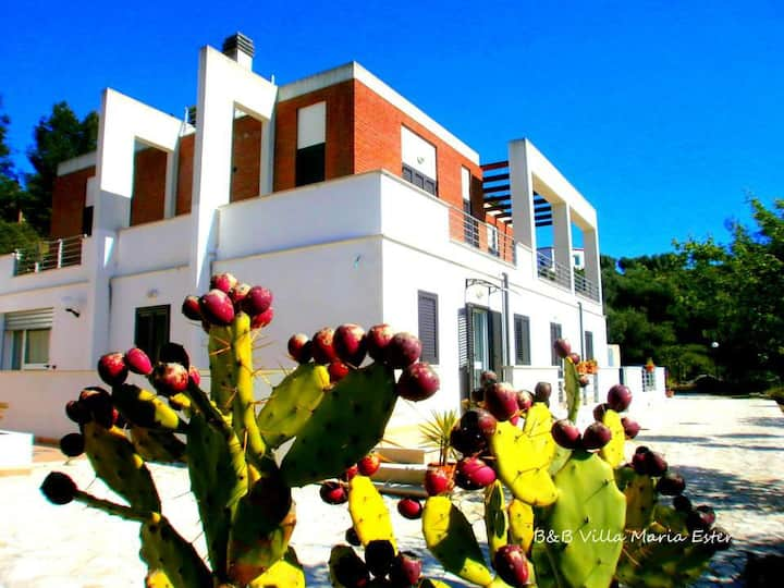 B&B Villa Maria Ester camera tripla