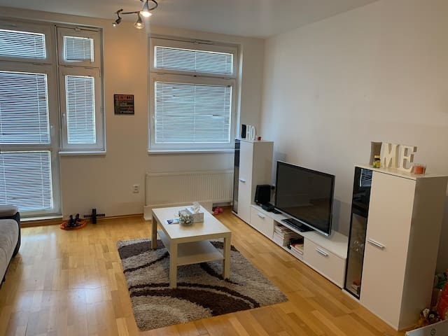 This is a beautiful spacious cozy apartment.