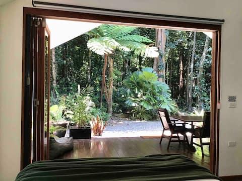 Daintree feriehus med skogutsikt