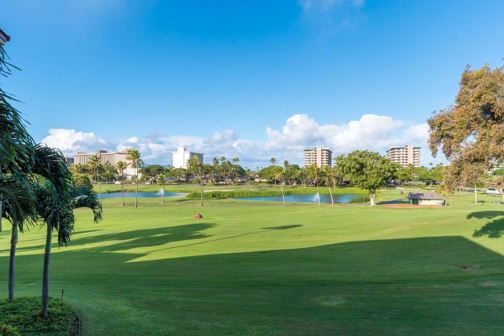 Located directly on the 16th Fairway of the Ka'anapali Golf course.