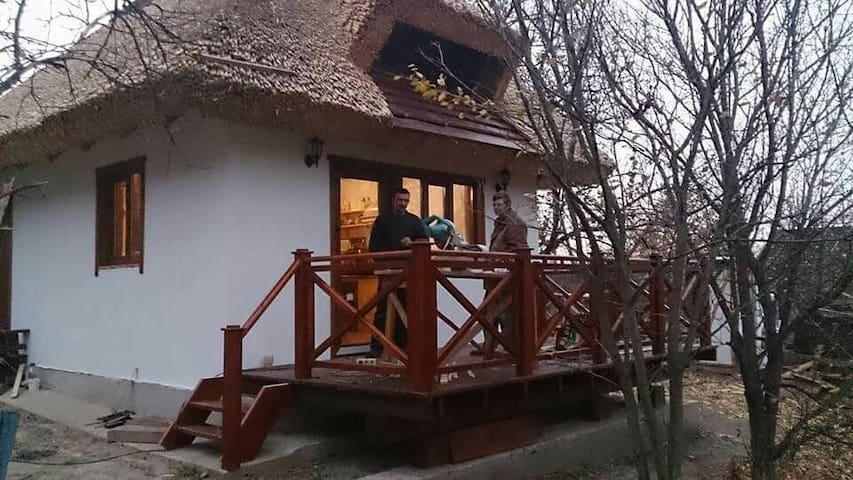 Домик на хуторе близ Днепропетровска