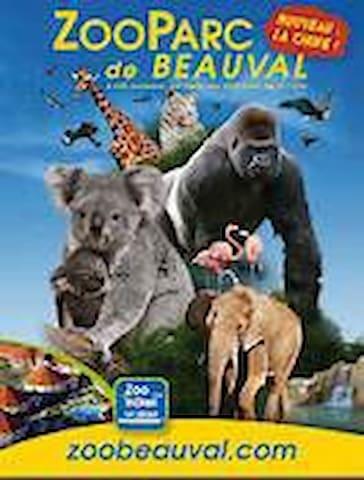 Maison  à 20 mns du Zoo de Beauval - Chémery - Huis