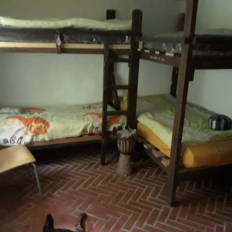 Sleeping in woods in house from 1893