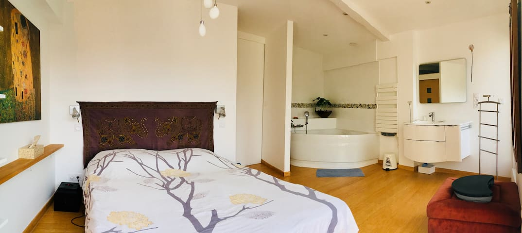 Stylish room with a pool in Toulouse city centre