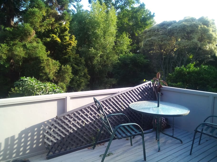 Large deck for BBQs and sitting around in the evening