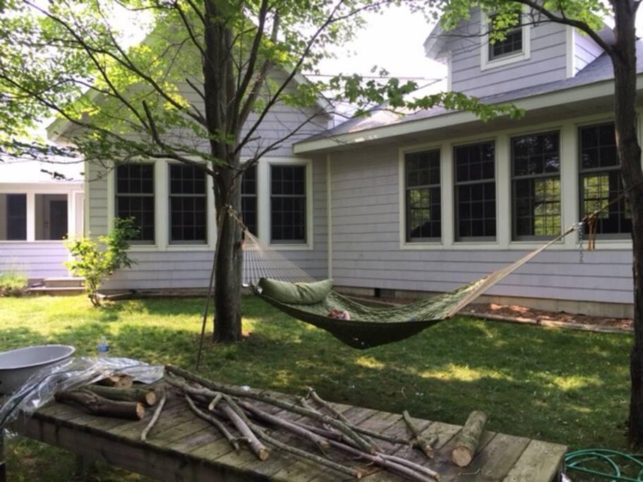 Large Backyard with hammock