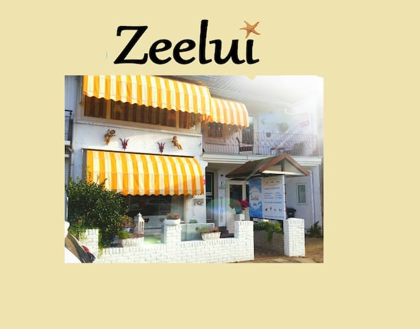 ENJOY LIFE BY THE SEA IN YOUR OWN HOTEL - Egmond aan Zee - House