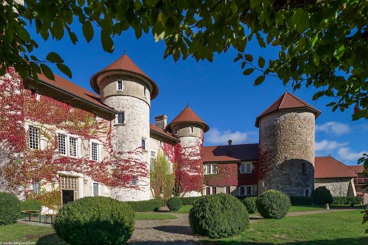 Envie de partager la vie de château
