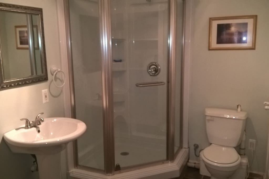Bathroom showing full shower, toilet and basin.