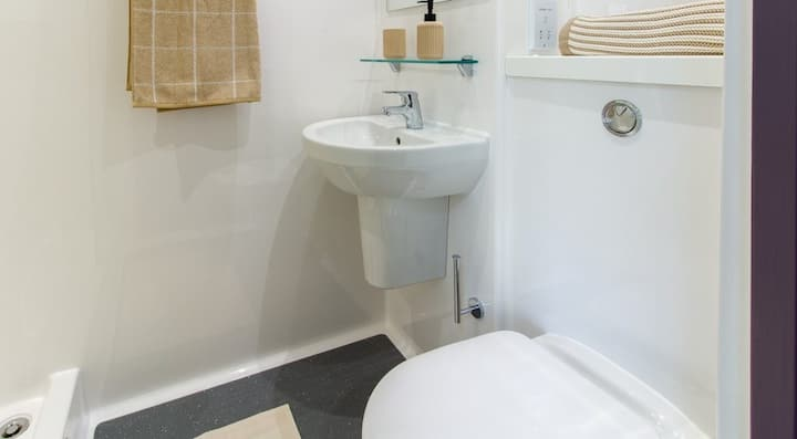 Sophisticated Silver Accessible Ensuite