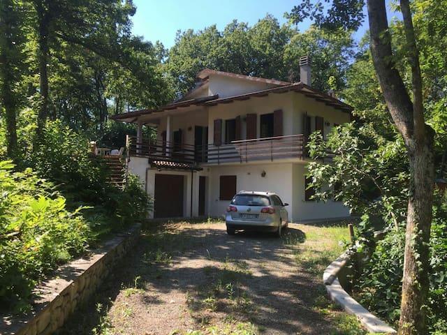 Villetta nel bosco a Samone - Samone - House