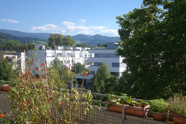 schöne  Wohnung mit Panorama-Blick Freiburg-Vauban