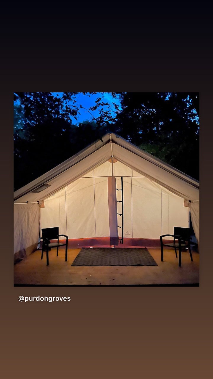 Magical Wall Tent