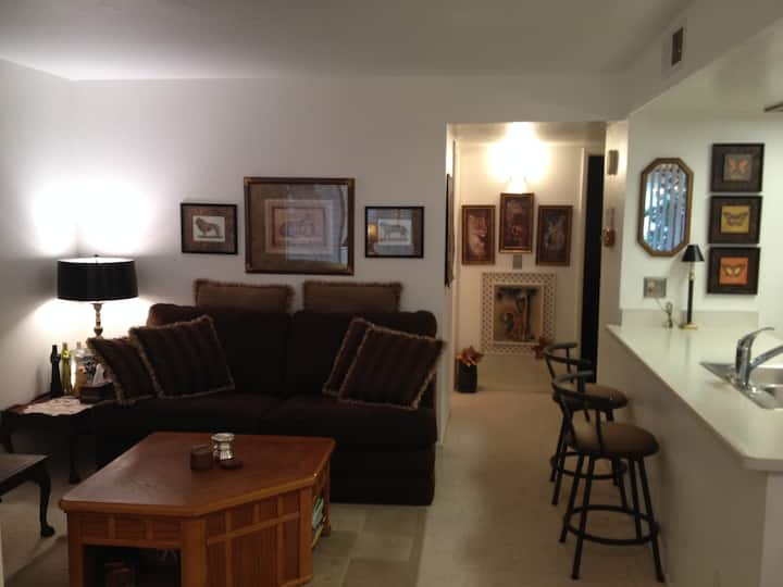 Cozy condo near Cubs/Angel training camps in Mesa
