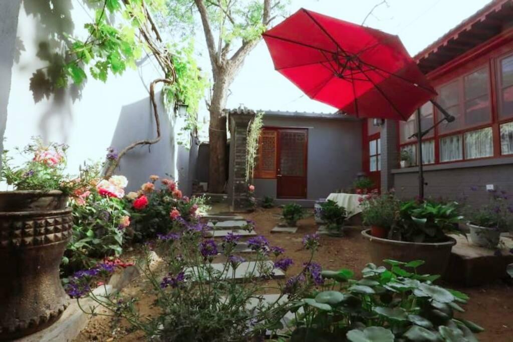 春夏,红袖添香的院子