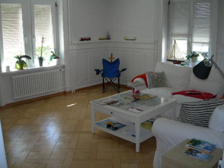 Comfortable living room with wooden floor