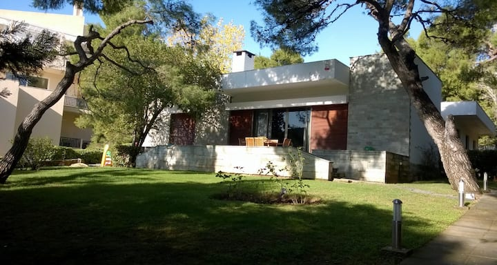 Spacious villa in Politia-Kifissia