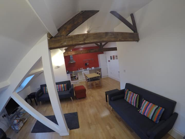 Great central Sheffield loft apartment with WiFi