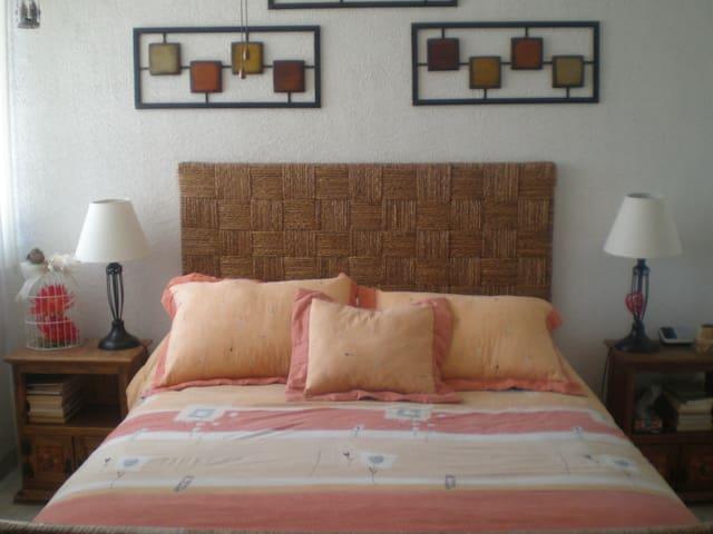 ACOGEDORA HABITACION, ZONA ACCESIBLE Y FAMILIAR - Santiago de Querétaro