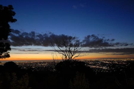 Big City Lights On The Mountain - Mount Dandenong
