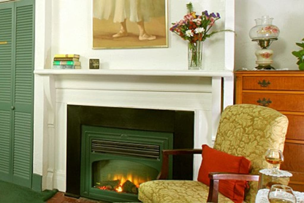 Synphony Electric Fireplace.
